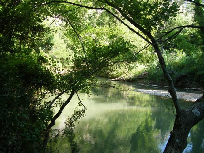 La rivière a chateauvert