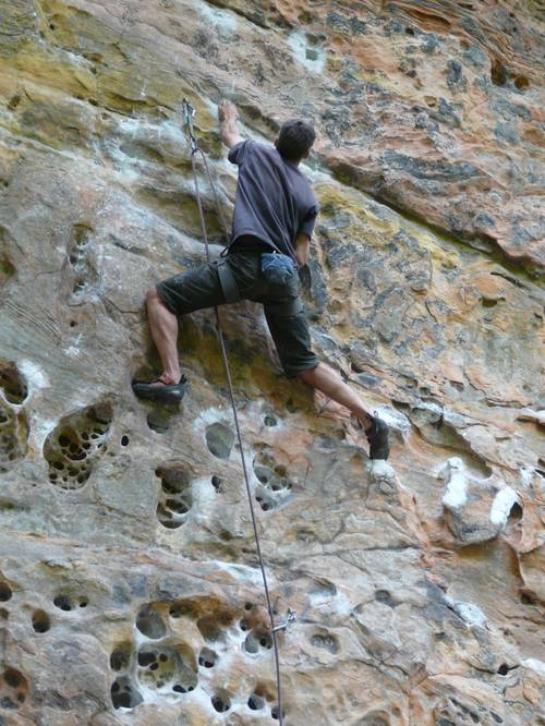Tissue tiger 7b, Red River Gorge