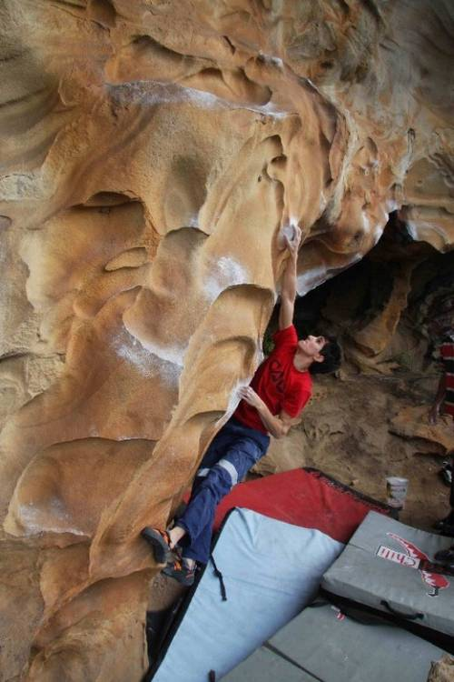 Fools Gold 7b, Golden section